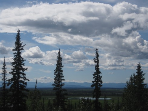 Boreal forest and mountains (Wrangell-Elias??)