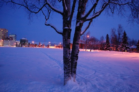 Night Falls on the Park Strip, Anchorage